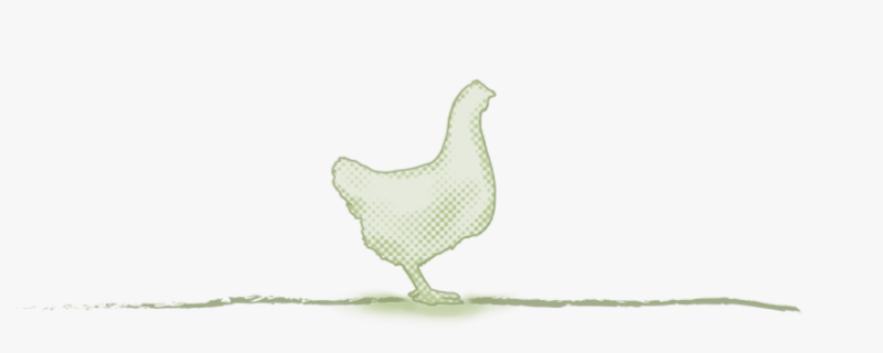 media/image/category_title_huhn.png
