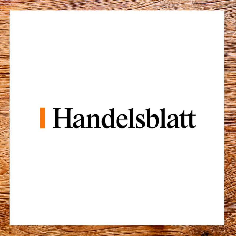 media/image/Handelsblatt.jpg